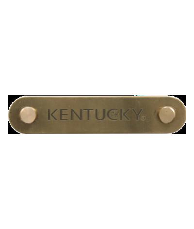 Kentucky Name Plate Logo...