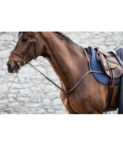 Dyon Standing Martingale...